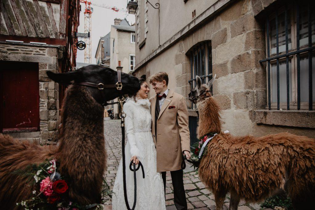 Lama rennes mariage