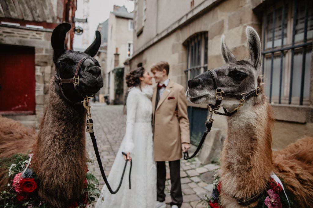 Shooting inspiration mariage lamas